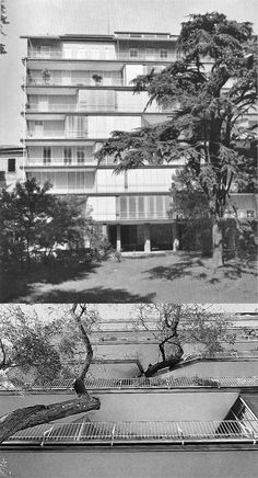 Ignazio Gardella _ Via Marchiondi. The south elevation is defined from each apartment. The bow winows correspond to the living room, with different dimension and position on every floor. A tree is passing trought two floors.