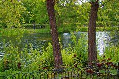 Regents Park Spaces, Park, Plants, Parks, Planters, Plant, Planting