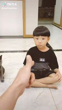 And the winner is. - christa abele - And the winner is. Cute Funny Animals, Cute Baby Animals, Funny Cute, Cute Cats, Cute Animal Videos, Funny Animal Pictures, I Love Cats, Crazy Cats, Kittens Cutest