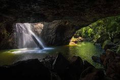 Springbrook-National-Park_things-to-do-with-kids-on-the-Gold-Coast