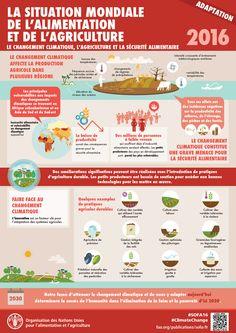 La fórmula para el zumo verde perfecto The ultimate green juice formula infographic Healthy Juice Recipes, Juicer Recipes, Healthy Juices, Healthy Smoothies, Healthy Drinks, Healthy Snacks, Healthy Eating, Salad Recipes, Snacks Recipes