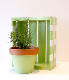 Mother's Day Gift Ideas - DIY Painted Crate for gardening tools + Clay Pot in green apple