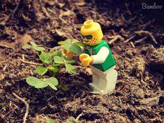 La storia di ronnie che prosegue nel suo cammino e breve nuove notizie da ronnie! Stay tuned! #lego #life #in #plastic #is #fantastic #Ronnie #agricoltore  Green-fingered LEGO by Giorgia Parisi Bamboo on 500px