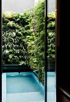 Swimming pool: The swimming pool is surrounded by a lush vertical garden, connecting the home seamlessly to the outdoors and nature. Backyard Pool Designs, Patio Design, Exterior Design, Garden Design, Small Pool Design, Garden Bathroom, Garden Architecture, Interior Architecture, Small Pools