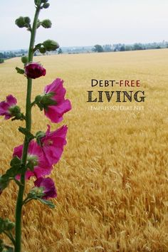 Debt-free Living tips at http://empressofdirt.net. Practical ideas for living within your means and enjoying life without the stress of debt and overspending.