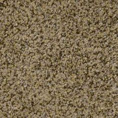 MARTINICA ORNAMENTAL Texture TruSoft® Carpet - STAINMASTER®