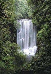 Waunui Falls in New Zealand