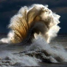 XXXXX Force of Mother Nature ~ epic wave **waves are super hard for me to draw so i want to challenge myself and be able to draw something as cool as this** No Wave, Beautiful World, Beautiful Images, Beautiful Beautiful, Surf Mar, Foto Nature, Wild Nature, Backgrounds Wallpapers, Ocean Waves