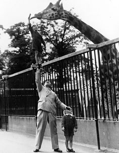 Wonderful World Revue performers Circus strongman Paul Remos and his six and seven year old sons feed a giraffe c. 1950.