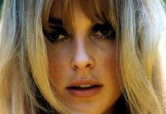 It's The Pictures That Got Small ... Sharon Tate, Timeless Beauty, Life Is Beautiful, How Are You Feeling, Pictures, Women, Photos, Ageless Beauty, Life Is Good