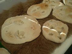 Salt dough baked Dinosaur fossils