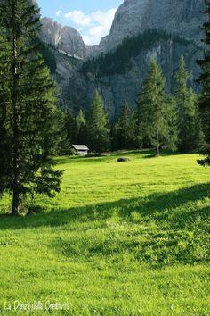 Dolomites Colfosco, province of Bolzano , Trentino alto Adige region Italy