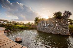 Bloc Architects - The Gates - Elaleni Meaning Of Community, Outside World, Gated Community, Sustainable Living, Water Features, Gates, Natural Stones, Sustainability, Lush