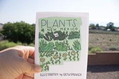 Illustrated Zine / Plants Zine / New Mexico / Illustration / Art Zine / Plant Drawings / Zine / Plant Illustrations / Indie Zine / ABQ Dog Mom Gifts, Cat Gifts, Mexico Art, New Mexico, Art Zine, Graphic Novel Art, Sad Cat, Plant Drawing, Land Of Enchantment