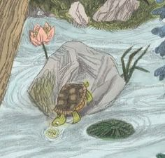 """Walker Picture Books on Twitter: """"Just a wee tortoise, checkin' herself out…"""