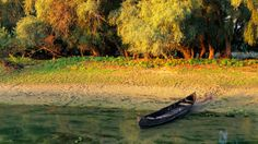 Romania's Danube Delta Biosphere Reserve is a feral labyrinth of plants and animals punctuated by even wilder towns. Danube Delta, Paradise Travel, Romania, Travel Guide, Golf Courses, Men's Journal, Europe, Adventure, Mountains