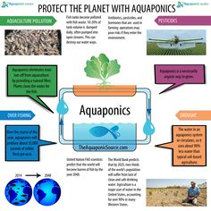 Protect the planet with Aquaponics!   TheAquaponicSource.com