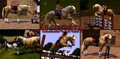 adoreible sims 3 horses   one of my Favourite horses on sims 3, though I can't play this horse ...