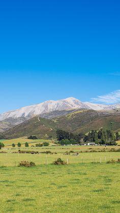 Kiwi Directory - Best New Zealand Business Directory - Free Listing Stuff To Do, Things To Do, Mountain View, Mount Rainier, Kiwi, New Zealand, Train, Mountains, Beautiful