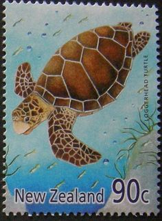 Stamp: Loggerhead (Caretta caretta) (New Zealand) (Year of the Snake Mi:NZ 2388 Year Of The Snake, Vintage Stamps, Reptiles And Amphibians, New Zealand, Turtle, Birds, Nature, Seals, World