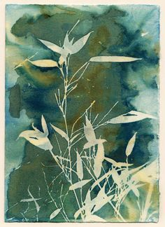 Cyanotype printing is an alternative photography process that uses sunlight to expose the image. I developed a way of taking the traditional cyanotype process and altering the process so that instead of a normal blue and white print, I could get varied shades of blue, green, sometimes even yellow creeps in. Instead of the end goal of a very tidy and neat blue and white cyanotype, the end goal is a unique, completely imperfect print. This print comes framed. Image size is 4.5 by 6.5, in an 11…