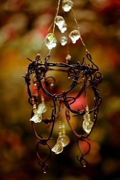 Fairy chandelier with prisms of light  refracting off the glass pieces… ~Charlotte (PixieWinksFairyWhispers)