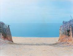 Gibson Beach, in Sagaponack, New York. Wide-open Atlantic beaches backed by wild dunes are a Hamptons hallmark