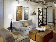 Track Lighting >> http://www.hgtvremodels.com/interiors/living-room-lighting-designs/pictures/index.html?soc=pinterest