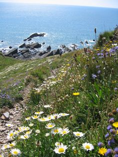 England Travel Inspiration - Morwenstow on the north coast of Devon South West Coast Path, North Coast, Beautiful World, Beautiful Places, St Just, Devon And Cornwall, English Countryside, British Isles, Scenery