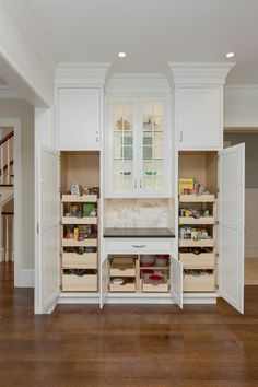 Interior Design Kitchen pantry cabinets with pull out drawers and crown molding in Showplace white kitchen Best Kitchen Design, Kitchen Pantry Design, Kitchen Pantry Cabinets, Kitchen Redo, Interior Design Kitchen, Kitchen Storage, Wall Pantry, Pantry Storage, Cheap Kitchen