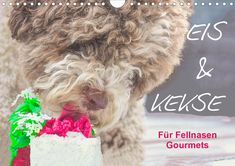 Wuffclick-pic TOP 12 ice cream and cookie recipes for furry gourmets with HD pics NOW AVAILABLE in the US. Just CLICK and bring happiness to your wall. Ice Cream Cookies, Dog Cookies, Dog Ice Cream, Ice Art, Photo Calendar, Ice Ice Baby, Create Photo, Healthy Sides, Cold Day