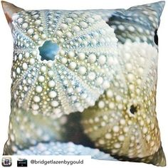 Wellbeing & Mindfulness Images (@wellness_images) • Instagram photos and videos Outdoor Cushions, Outdoor Rugs, Outdoor Furniture, Kiwiana, Commercial Art, Pastel Shades, Outdoor Living Areas, Outdoor Settings, Modern Contemporary