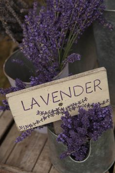 Farm Sign with Dried Lavender for Sale at Lavender Festival, Sequim, Washington, USA Photographic Print by John & Lisa Merrill at AllPosters.com