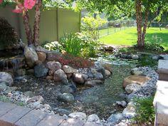 My water garden #2