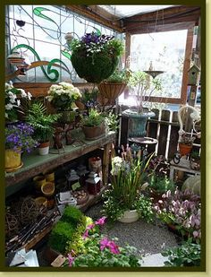 A look inside The Potting Shed http://www.potting-shed.com
