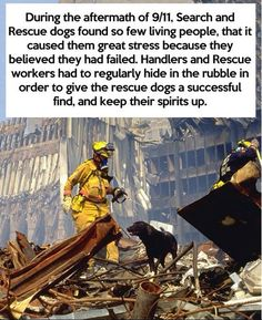 9/11 Service Dogs - It breaks my heart to hear that the service dogs were saddened by not being able to find many survivors... #9/11 #servicedogs