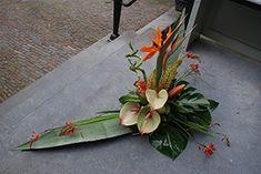 Tropisch Agaveblad