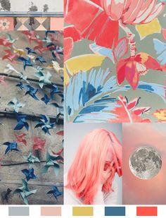Coral Moon color mood via Aaryn West
