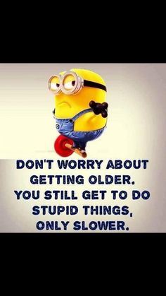Funny Minion Pictures, Funny Minion Memes, Funny Texts Jokes, Funny Insults, Text Jokes, Funny Jokes To Tell, Funny School Jokes, Minion Humor, Sarcastic Quotes