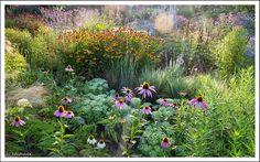Jaap de Vries y yo tenemos algunas cosas en común. Los dos practicamos la jardinería por afición. Los dos nos hemos encontrado en algún m...