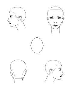 Head diagram stencils - hairbrained