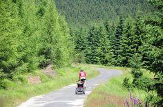 Fahrräder MTB Ferien in Polen von der berühmten Tour Betreibergesellschaft bei Złoty Potok Resort genießen.
