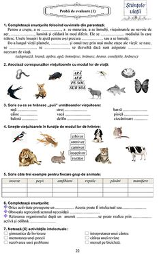Editura DOR Romanian Language, Preschool At Home, Math For Kids, 100 Days Of School, School Lessons, 100th Day, Kids Education, Parenting, Science