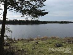 Land for sale in Two Recreational Riverfront Lots in Soda Creek, Williams Lake, British Columbia Real Estate News, Real Estate Houses, Williams Lake, New Property, Land For Sale, British Columbia, Open House, Soda, Coast