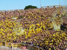 @Peñarol hinchada aurinegra #9ine