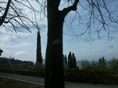Macchina, Perugia→Siena, Italia (Marzo)