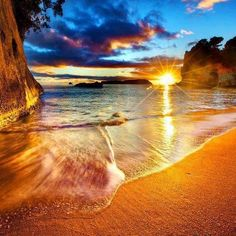 [Golden tide] ...