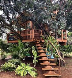 Baumhaus Planning is Made Easier Through a Collection of Great Tree House Books - Life ideas Your Ma Beautiful Tree Houses, Cool Tree Houses, Beautiful Homes, Beautiful Space, Tree House Designs, Tiny House Design, Backyard Treehouse, Treehouse Ideas, Treehouse Living