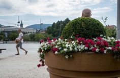 Perfectly timed photos by famous street photographer Pau Buscató Famous Street Photographers, More Photos, Funny Photos, Perfectly Timed Photos, Bergen, Rue, Street Photography, Cool Pictures, Shots
