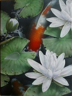 Terry Gilecki is a highly aclaimed painter of the beautiful Koi fish and the surreal world they live in. His paintings and prints are collected world wide. Koi Art, Fish Art, Tattoo Pez, Watercolor Flowers, Watercolor Art, Koi Fish Drawing, Koi Painting, Fish Paintings, Koi Carp Fish